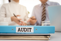 What Will The ATO Audit This Year?